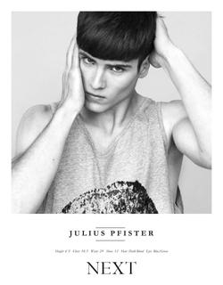 Julius Pfister