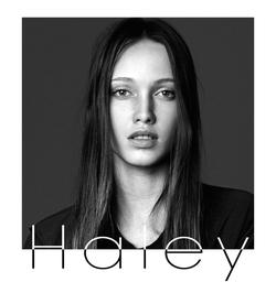 Haley Sutton