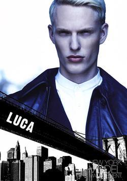 Luca Schmitz