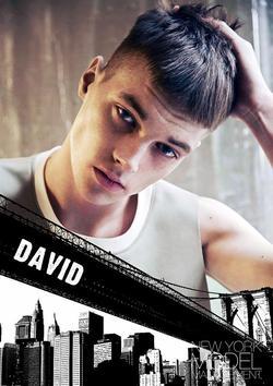David Vaicekavicius