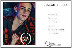 Declan Cullen