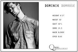 Dominik Domrose
