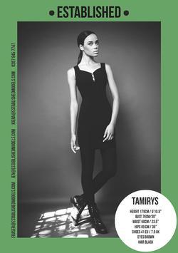 Tamirys