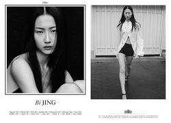 Bi Jing