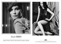 Suzie Bird