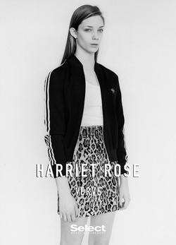 Harriet Rose