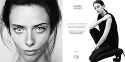 Clara Knorick