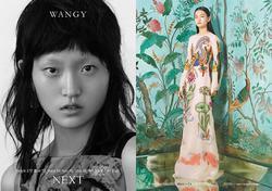 Wangy