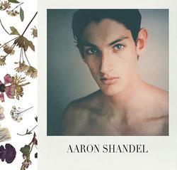 Aaron Shandel