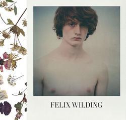 Felix Wilding