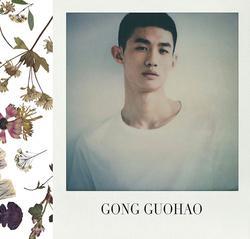 Gong Guohao