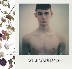 Will Wadhams