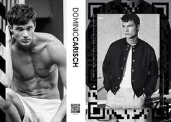 Dominic Carisch