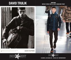 DAVID TRULIK