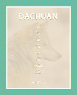 DACHUAN