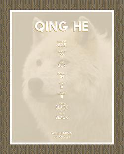 QING HE