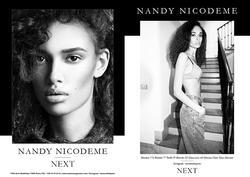 NANDY NICODEME INDD