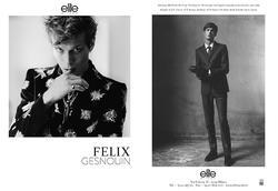 Felix Gesnouin   95426331