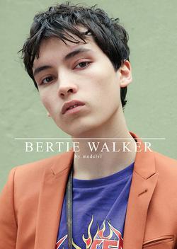 BERTIE WALKER   25822408
