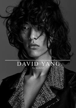 DAVID YANG   77180081