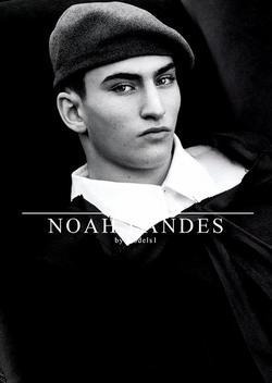NOAH LANDES   38911189