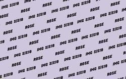 ROSE GILROY    34892811