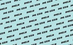 AMELIA GRAY    72509413