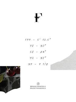 Huijun    10133065