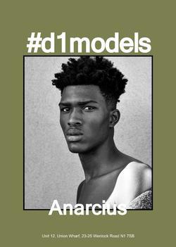 Anarcius   61126084