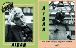 Aidan   46138822