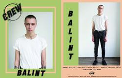 Balint   73904116