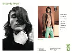 RICCARDO PEDINI   23489842