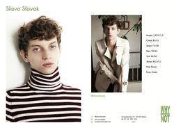 SLAVO SLOVAK   4615676