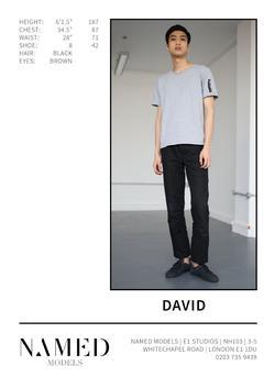 David    37774643