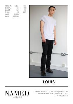 Louis    29203329