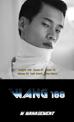 WANG   4645313