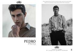 Pedro Pinto   55204040