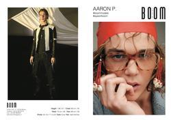 Aaron P   14193023