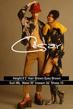 Cesar A    54729298