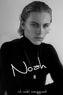 Noah   31763241