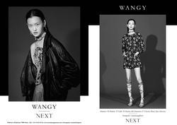 Wangy   45097679