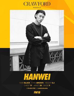Hanwei    66346787