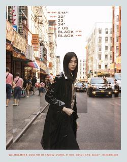 Siqi Chen   58030210