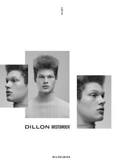 Dillon   19357786