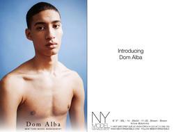 Dom Alba   19982169