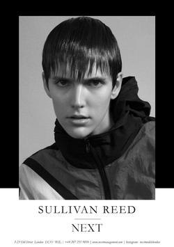 Sullivan Reed   55318586