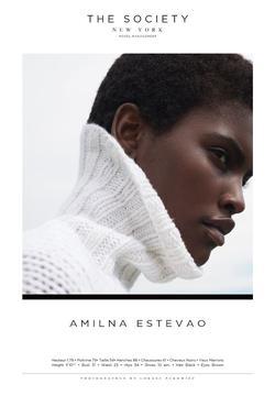 AMILNA ESTEVAO   20063985