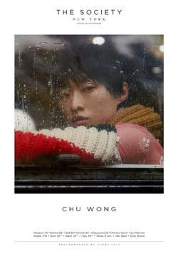 CHU WONG   33530380