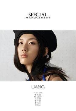 Liang   33280170
