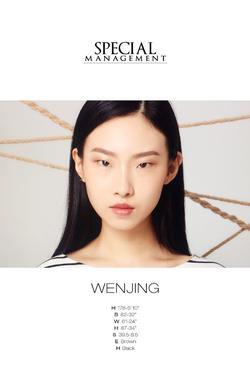 Wenjing   95356164